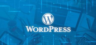Come eliminare senza categoria (Uncategorized ) da WordPress