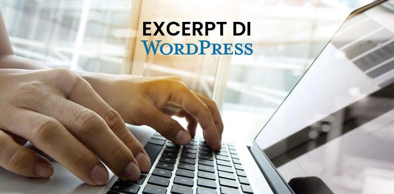 Come usare gli Excerpt (estratti o riassunti) di WordPress